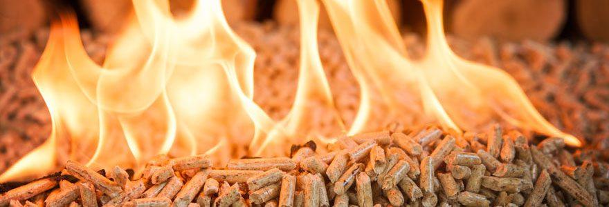 Combustibles de chauffage économiques : opter pour les combustibles à base de bois